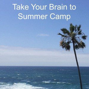 Take Your Brain to Summer Camp